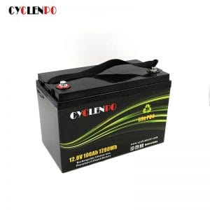 High Performance 12v 100ah Lifepo4 Battery with BMS