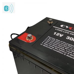 lithium ion battery 12v 300ah