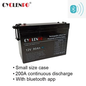 12v lithium ion battery manufacturers