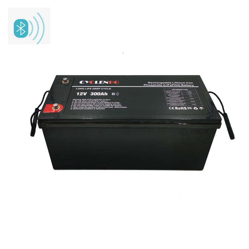 Lithium Ion Lifepo4 300Ah 12 Volt Battery With Bluetooth App Function