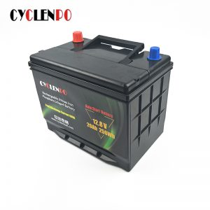 Cranking Amp LiFePO4 12V 20Ah Lithium Auto Battery