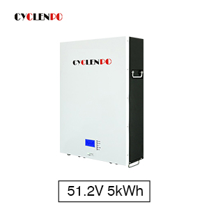 5KWH Solar Powerwall 51.2V 100Ah Lifepo4 Battery Storage Pack