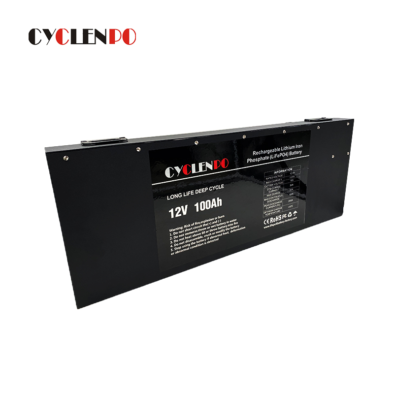 lithium ion battery 100ah
